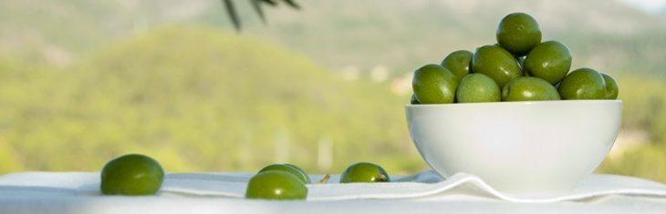 Del campo al paladar: La elaboración de las aceitunas
